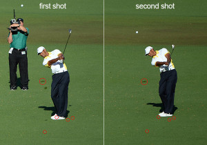 tiger-shots-side-by-side