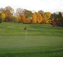 Vassar golf