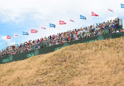 chambers bay grandstand